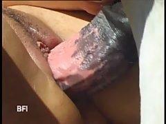 ZOO FB - Zoo porn fuck book free clips - XXX free animal sex